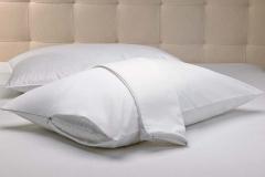 Pillow Protector 2